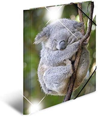 segno Mappe Con con elastici in gomma serie Animali motivo: Koala HERMA 19323/patinati Sammelmappe DIN A4 in plastica con stampa interna 1/pezzi