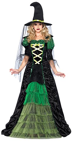 Hallowing Costumes (Storybook Witch Adult Costume Size Small)