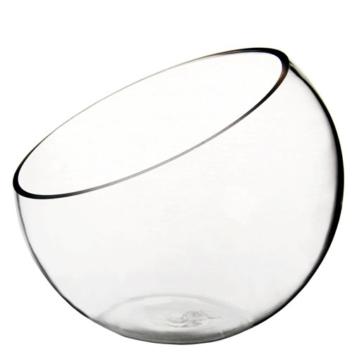 CYS EXCEL Glass Slant Cut Bubble Bowl, Fish Bowl & Plant Terrarium, Slant Cut Globe Vase Center Piece, Round Flower Vase, Pack of 1 (7