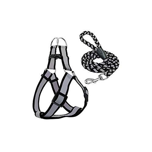 - Small Dog Harness and Leash Set Reflective Nylon Adjustable Small Dog Harness Leads Rope Set for Small Medium Dog Red Black Blue,Black,M