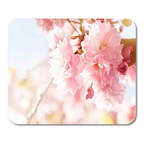(Emvency Mouse Pads Sunshine Sakura Cherry Blossom in Springtime Beautiful Pink Flowers Mouse Pad for notebooks, Desktop Computers mats 9.5