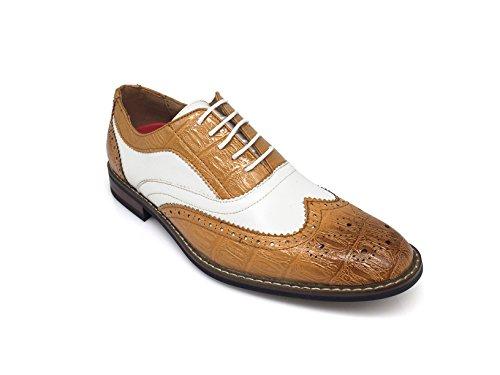 Men's Classic Italy Modern Oxford Wingtip Captoe 2-Tone Lace Dress Shoes (13, CONRAD3_TAN/White)
