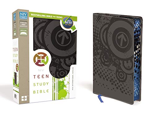 NIV, Teen Study Bible, Leathersoft, Gray, Printed Page Edges