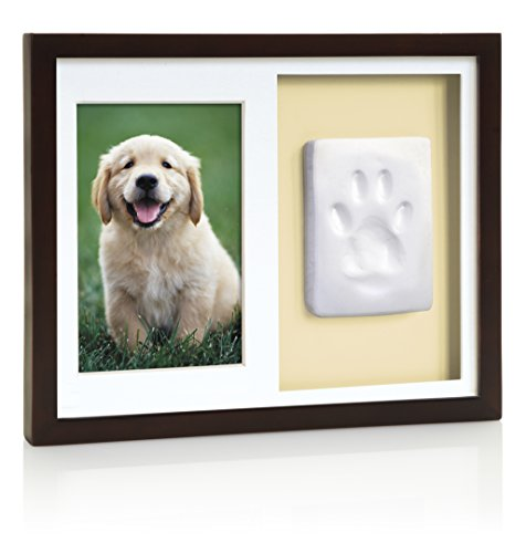 Tiny Ideas Dog Or Cat Paw Print Keepsake Wall Frame