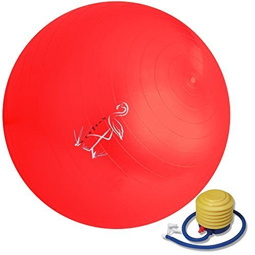 Exercise Ball – Great Exercise Ball For The Ab – 65cm – Great For Yoga – Comes With Foot Pump - Anti-Burst – 1 Year Guarantee(Red)