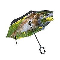 Black Rain Umbrella Cute Sable White Shetland Sheepdog Sheltie Travel Umbrella Double Layer Anti Uv Protection Golf Inverted Umbrella With C-shaped Handle For Car Outdoor