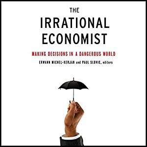 The Irrational Economist Hörbuch