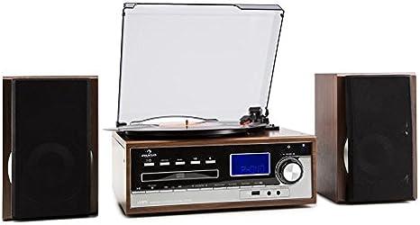 Auna Deerwood Equipo estéreo con Tocadiscos - Multimedia, máx. 45 RPM, Altavoces, FM, USB, MP3, Digitalización, Reproductor CD, Pletina Cassette, AUX, Negro Plateado