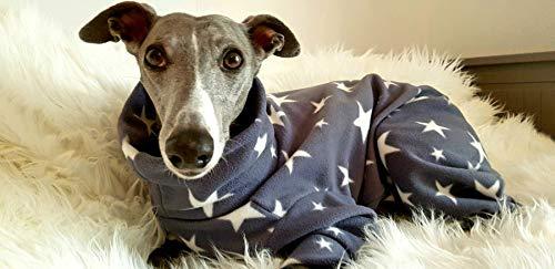 Abrigo para perros con estrellas
