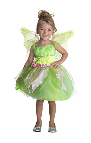 Happy Haunts Twinkle Garden Fairy Costume, 3-4T ()