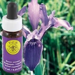 Iris Dropper (Flower Essence Services Iris Dropper, 0.25 Oz by Flower Essence Services)
