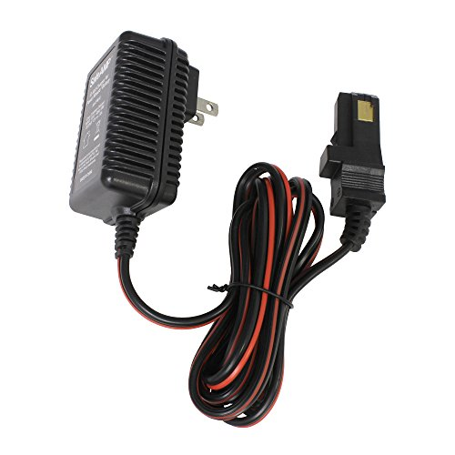 SafeAMP 12-Volt Charger for Power Wheels Gray
