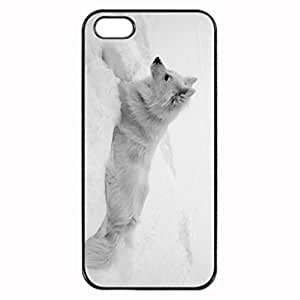 the winter dog american eskimo which is lying at the snow without problem. Pattern Image Protective iphone 6 plus 5.5 / iPhone 5 Case Cover Hard Plastic Case for iPhone 6 plus 5.5