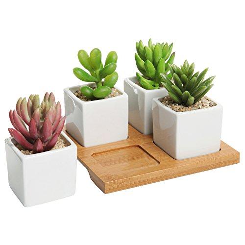 Modern Square Ceramic Succulent Planters