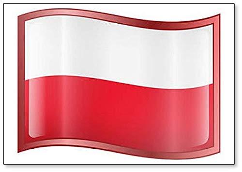 Imán clásico para nevera con la bandera de Polonia