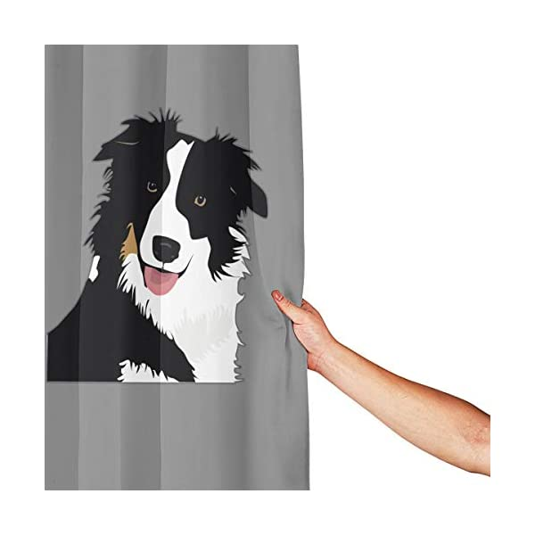 """Perfect Appearance Border Collie Shower Curtain 7-12 Grommet Holes Waterproof Thick Bathroom Plastic Shower Curtains 48"""""""" W X 72"""""""" H No Chemical Odor Rust Proof Grommets 3"""