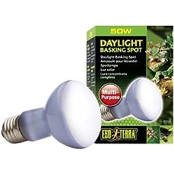 Exo Terra Sun-Glo Basking Spot Lamp, 50-Watt/120-Volt