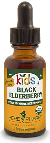 Herb Pharm Kids Certified-Organic Alcohol-Free Black Elderberry Glycerite Liquid Extract, 1 Ounce