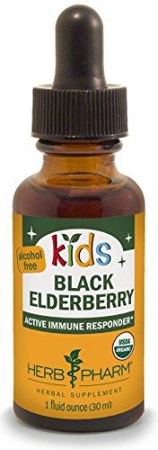 Extract Organic Elderberry (Herb Pharm Kids Certified-Organic Alcohol-Free Black Elderberry Glycerite Liquid Extract, 1 Ounce)