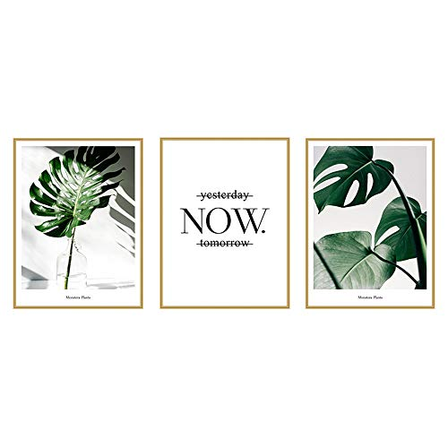 (Botanical Wall Art Decor with Printed Frames 12