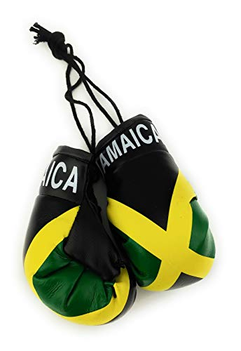The 10 best jamaican flag boxing gloves for 2020
