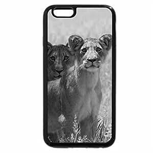 iPhone 6S Case, iPhone 6 Case (Black & White) - Alert lion cubs