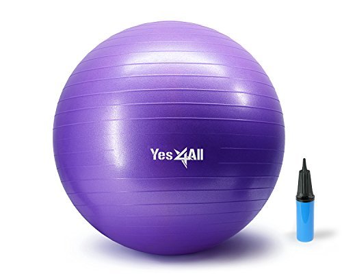 Yes4All 2000-lbs Anti Burst Stability Ball with Hand Pump (T_Purple+Pump-65 cm)