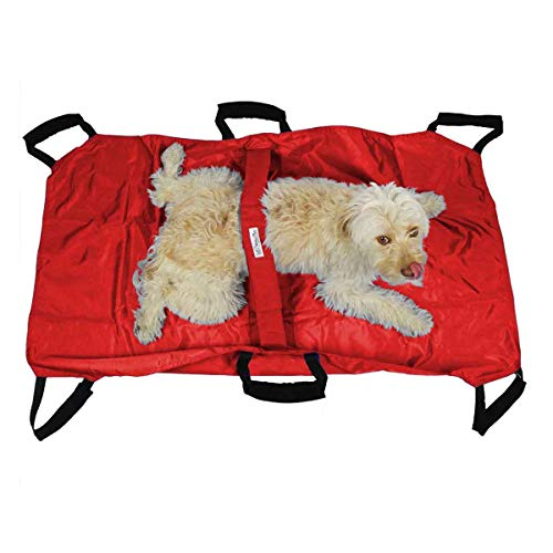 Small Animal Transport - Walkin' Transport Stretcher for Dogs and Other Animals with Safety Strap to Keep Your Pet Secure