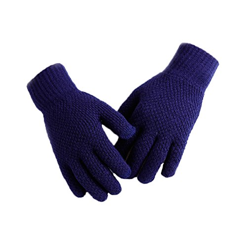 APAS Winter Touch Screen Knitted Gloves Windproof Coldproof Thermal Warm Mittens for Biking, Cycling, Motorcycling, Driving