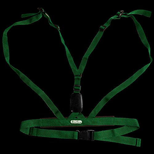 Backtone Posture Training Device