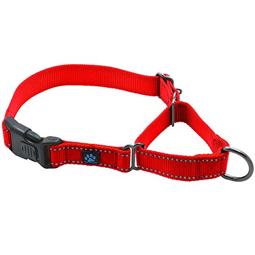 Max and Neo Nylon Martingale Collar - We Donate a Collar to a Dog Rescue for Every Collar Sold (Large, RED) ()