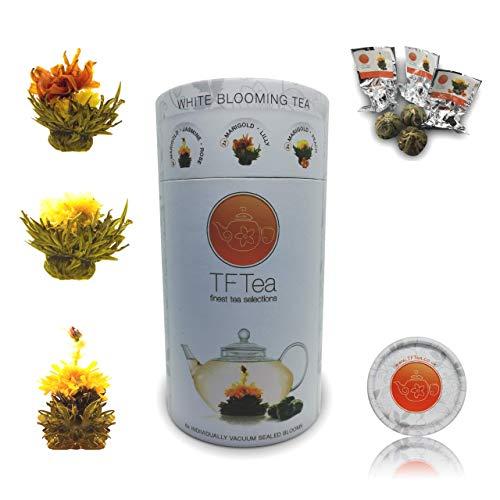TFTea Teeblumen Mix - 6 teeblüten (48 g, 3 verschiedenen Weißer Tee)