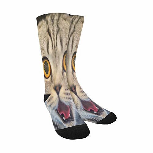 INTERESTPRINT Funny Cute Novelty and Cool Funny Cat with Blurred Background Sublimated Crew Socks Unisex