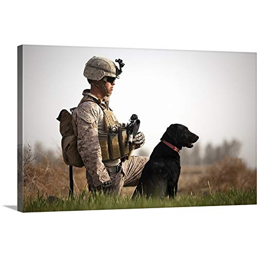 "GREATBIGCANVAS Gallery-Wrapped Canvas Entitled U.S. Marine Holds Security in a Field with his IED Detection Dog by Stocktrek Images 36""x22"""