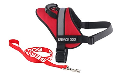 (USA Pet Products Dog Vest Harness with Service Dog Patches and Matching Leash, Emotional Service Animal Vest and Matching Leash Set Ser. Har. (Small))