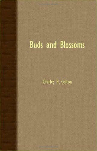 Red Bud Blossom - Buds And Blossoms