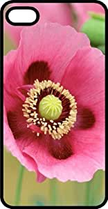 Pink Flower Loaded with Pollen Black Plastic For Ipod Touch 5 Case Cover