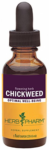 Herb Pharm Chickweed Liquid Extract – 1 Ounce For Sale