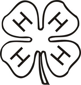 4 H CLOVER VINYL STICKER