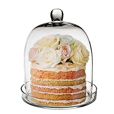 CYS EXCEL Cloche Bell Glass Dome with Tray