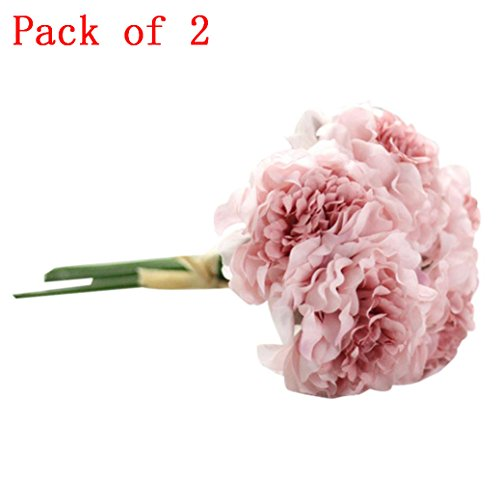Peony 10 Piece / Bouquets Silk Artificial Flowers Natural Fake Gifts Garden Wedding Festival Balcony Courtyard Home Party Events Table Office Patio Decor Clearance (Multicolor B) (Peony Basket)