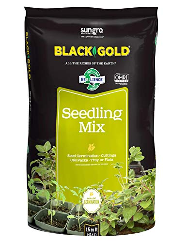Black Gold 1411002.Q16U Soil Seedling