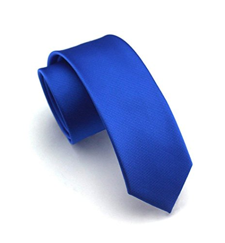 Men Boy Narrow Royal Blue Woven Silk Tie Regular Soft Horizon Boys Party Necktie ()