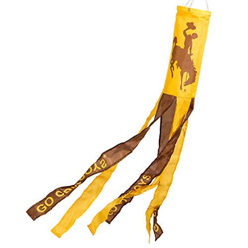 College Flags and Banners Co. Wyoming Cowboys Windsock ()