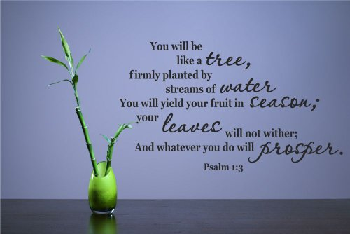 You will be like a tree, firmly planted by streams of water You will yield your fruit in season; your leaves will not wither; And whatever you do will prosper. Psalm 1:3 Vinyl Wall Decals Quotes Sayings Words Art Decor Lettering Vinyl Wall Art Inspirational Uplifting (3 1 Decal Wall Psalm)
