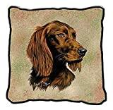 Irish Setter Pillow - 17 x 17 Pillow