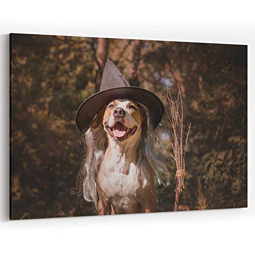 Cute Dog with Broomstick Dressed up for Halloween as Friendly Forest Witch Canvas Art Wall Dcor]()