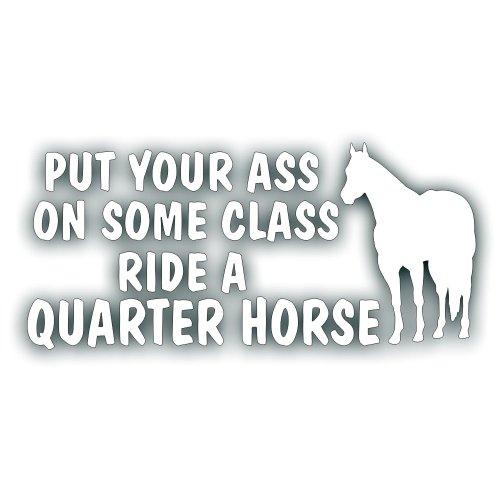 Quarter Horse Decal - 2