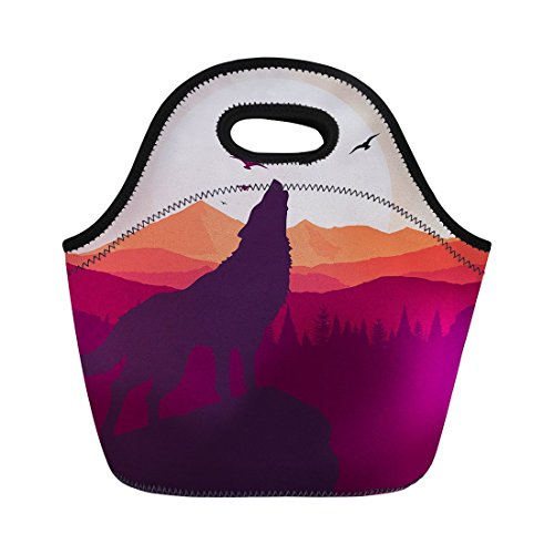 Tote Lunch Bag Wolf Red Costum Picnic Box Luggage for Women Men Adult Kids Girls Boys Insulated Meal with Zip Closure -