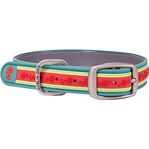 Dublin Dog Co. 12.5  x 17  Wild Flower Collar, Medium, Fresh Guava